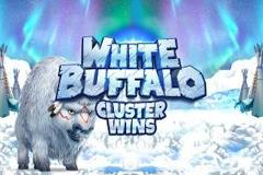 White Buffalo Cluster Wins