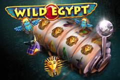 Wild Egypt