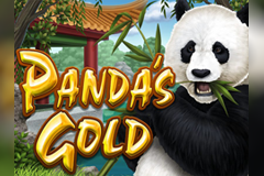 Win Paradise giving a $/€260 online casino bonus.