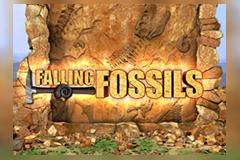 Falling Fossils
