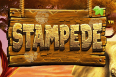 Stampede