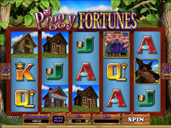 main game board featuring 5 reels and 25 pay lines - Casino Bonus Beater