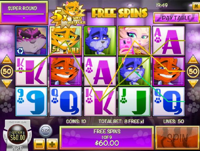 Multiple winning paylines triggered during the Free Spins feature.