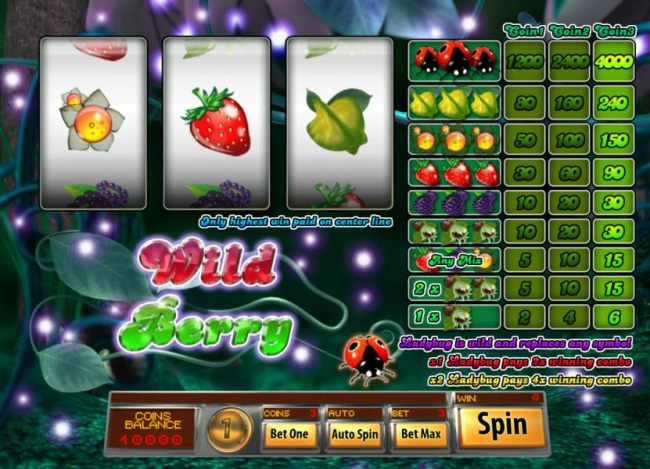 main game board featuring three reels, 1 payline, multipliers and wilds - Casino Bonus Beater