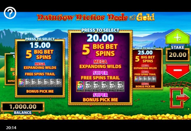 You have four different bet options to choose from when playing the Big Bet feature.