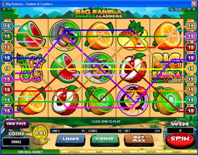 Images of Big Kahuna Snakes & Ladders