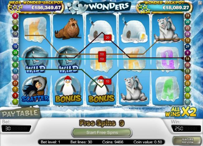 250 coin big win triggered by multiple winning paylines during the free spins feature