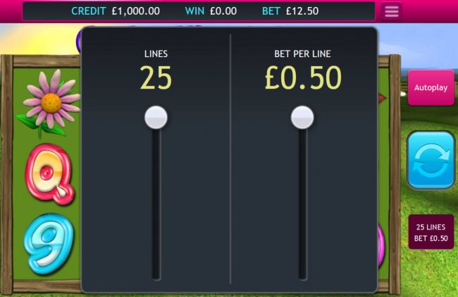 Betting Options - Casino Bonus Beater