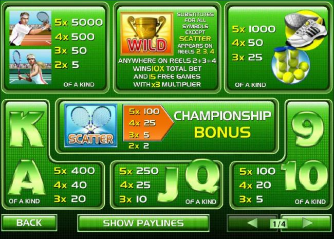 Wild, Scatter, Bonus and slot game symbols paytable