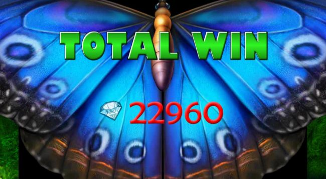 Total Free Spins Bonus Win 22,960 coins
