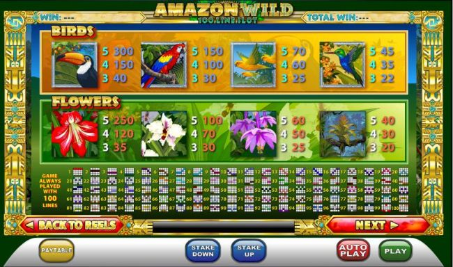 slot game symbols paytable and 100 payline diagrams