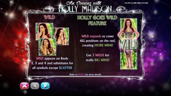 Wild Symbol and Holly Goes Wild feature rules