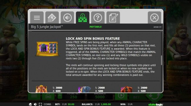 Lock and Spin Bonus Feature Rules