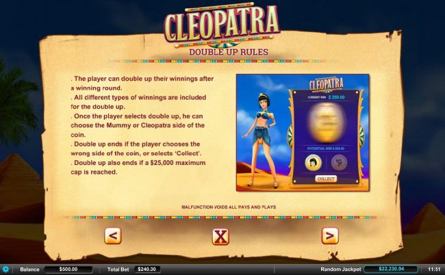 Double Up Rules - The player can double up their winnings after a winning round.
