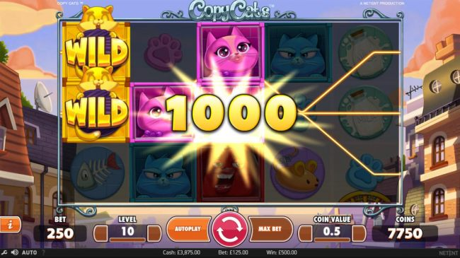 Multiple winning paylines triggers a 1000 coin big win!