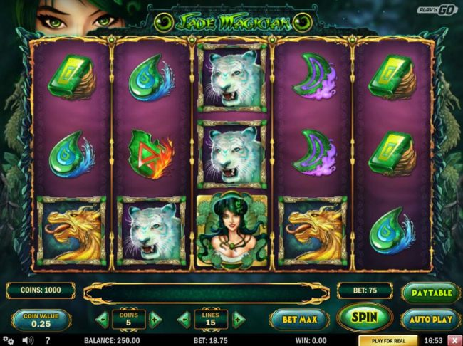 A mystical magician themed main game board featuring five reels and 15 paylines with a $3,125 max payout