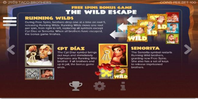 Free Spins Bonus Game - The Wild Escape - Rules and How to Play