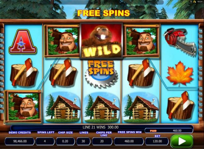 A 460.00 big win triggered during the free spins feature.