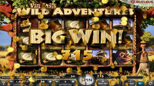 Free Spins Feature Pays Out A Total of 715 credits