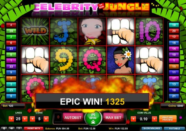 Another epic win resulting in an 1325 coin payout