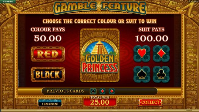 Gamble feature game board. Gamble feature is available after every winning spin.