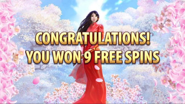 Player is awarded 9 free spins.