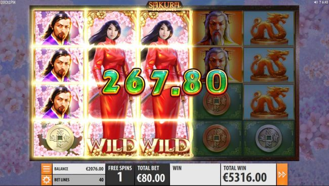 Multiple winning paylines triggers a big win while playing the free spins feature!