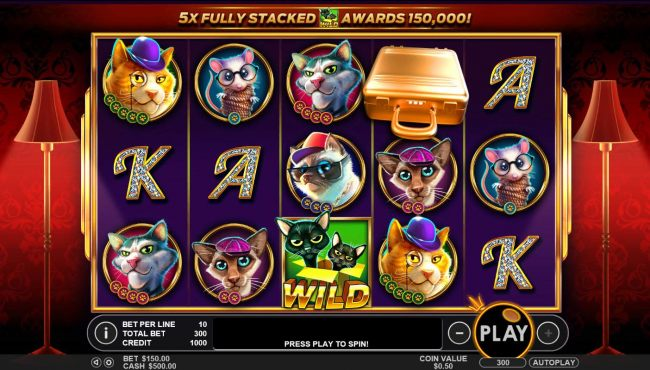 A frisky feline themed main game board featuring five reels and 30 paylines with a $25,000 max payout